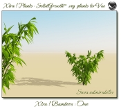 4_Xtra__Bamboos___One_a_Vue_107_5_img