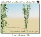 Xtra__Bamboos___Two_Vue_107_4_img
